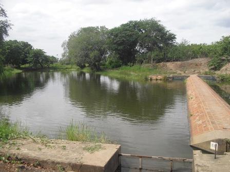 Em 2.541 hectares, vivem 2.134 famílias. Segundo a Associação do Distrito de Irrigação Icó-Lima Campos (Adicol), apenas 40% desses hectares são irrigados (Foto: Blog Eugênio Freitas)