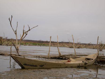 Após seca de 2012, Ceará sofre novamente com a falta de chuva (Foto: Tribuna do Ceará)