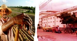 Milagres-CE: 28 de julho dia do agricultor; Como era e é a agricultura do município?