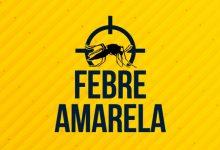 febre_amarela