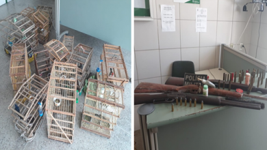 """A prisão aconteceu após denuncia através do telefone de emergência """"190"""" — Foto: Reprodução/TV Verdes Mares"""